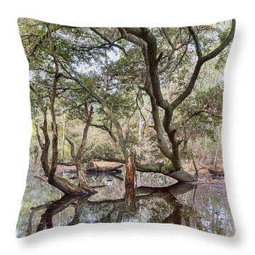 Over Water Throw Pillow by Alan Raasch