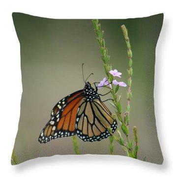 Overbalanced Throw Pillow