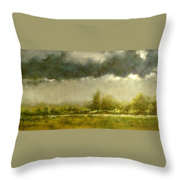 Overcast Day At The Refuge Throw Pillow