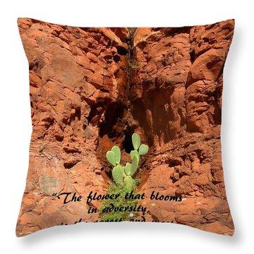 Overcoming Adversity Throw Pillow