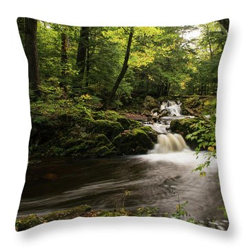 Overlooked Falls Throw Pillow
