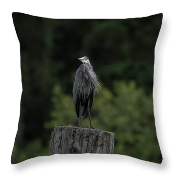 Overlooker  Throw Pillow by Rod Wiens