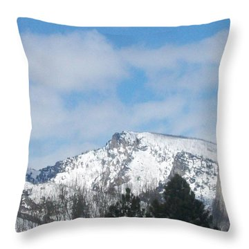 Overlooking Blodgett Throw Pillow by Jewel Hengen