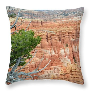 Throw Pillow featuring the photograph Overlooking Bryce Canyon by Bruce Gourley