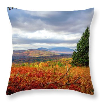 Overlooking The Foothills Throw Pillow