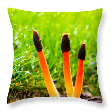 Overnight  Beauties Throw Pillow by Allan Levin