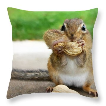 Overstuffed Throw Pillow by Lori Deiter