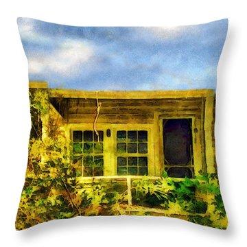 Overtaken Throw Pillow by RC deWinter