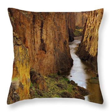 Owhyee River Throw Pillow