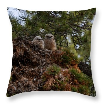 Owl Babies Rocky Mountain National Park  Throw Pillow