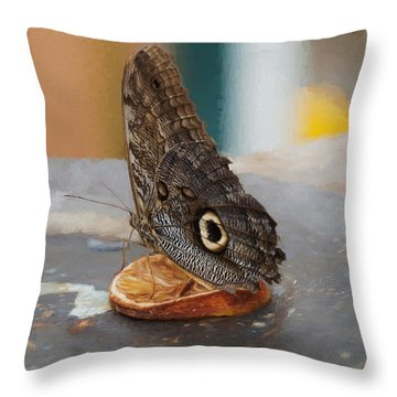 Throw Pillow featuring the photograph Owl Butterfly-1 by Paul Gulliver