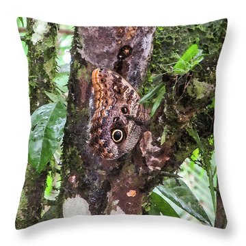 Owl Butterfly On A Tree Throw Pillow