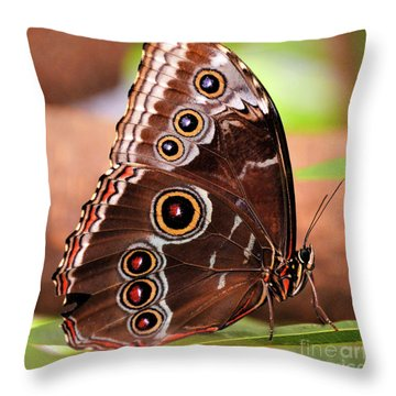 Owl Butterfly Portrait Throw Pillow