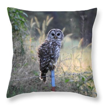 Owl Cherish This Moment Forever Throw Pillow by Roxanne Raber