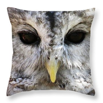 Throw Pillow featuring the photograph Owl Eyes by William Selander