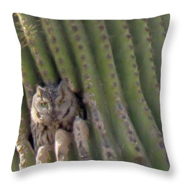 Owl In Cactus Burrow Throw Pillow