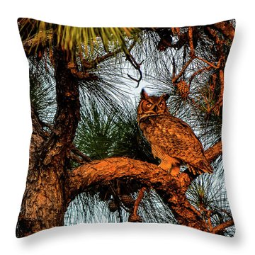 Owl In The Very Last Sunset Light Throw Pillow