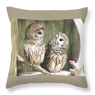 Owl Love You Forever Throw Pillow
