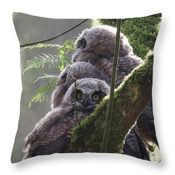 Owl Morning Throw Pillow