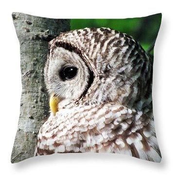 Owl Profile Throw Pillow by Christy Ricafrente
