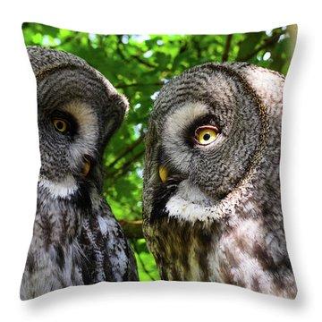 Owl Talk Throw Pillow