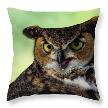 Owl Tongue Throw Pillow