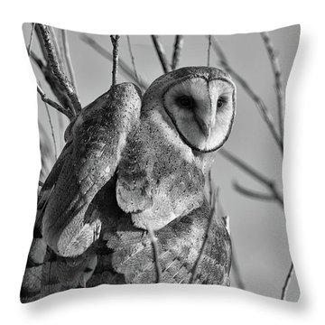 Owl Whites Throw Pillow