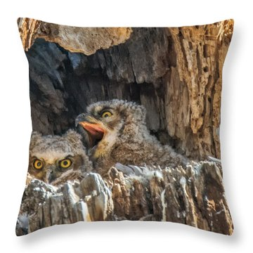 Throw Pillow featuring the photograph Owlet Surprise by Stephen  Johnson