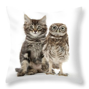 Owling And Yowling Throw Pillow