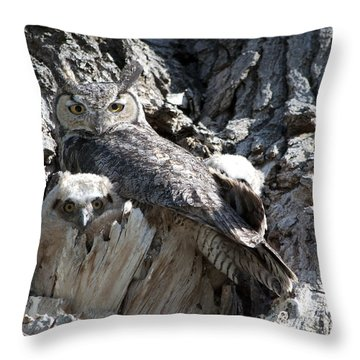 Owls View Throw Pillow by Lula Adams