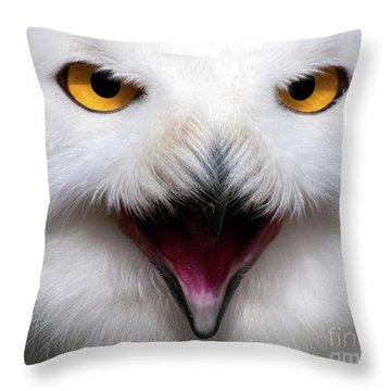 Owlsome Throw Pillow