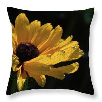 Ox Eye Susan Throw Pillow