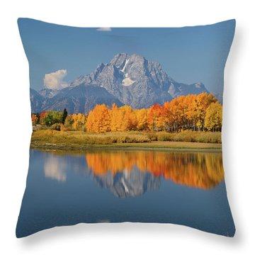 Oxbow Bend Reflection Throw Pillow