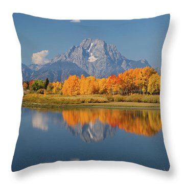 Oxbow Bend Reflection Throw Pillow