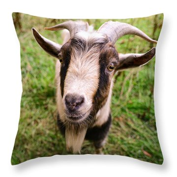 Oxford Goat Throw Pillow