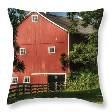 0035 - Oxford's Big Red I Throw Pillow