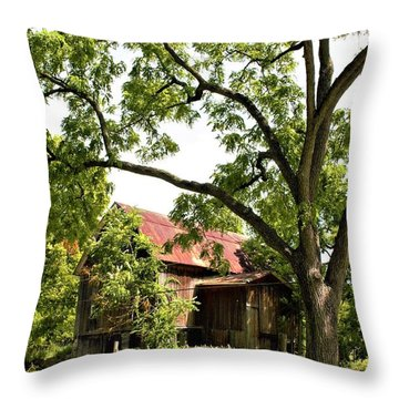 0037 - Oxford Red IIi Throw Pillow