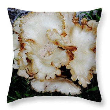 Oyster Mushroom Throw Pillow