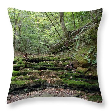 Ozark Creek Throw Pillow