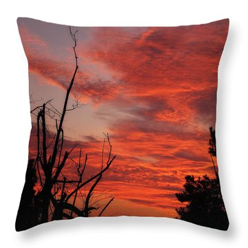 Throw Pillow featuring the photograph Ozark Dawn by Michael Dougherty