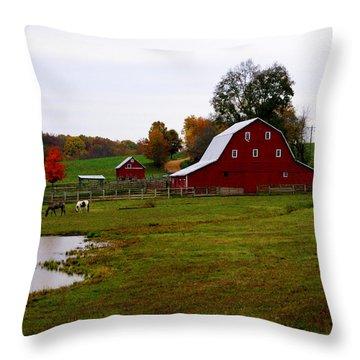 Ozark Farm Throw Pillow by Marty Koch