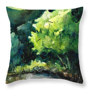 Ozarks Anywhere Usa A Study Throw Pillow