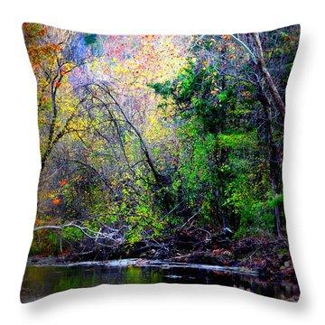 Ozarks Fall Throw Pillow