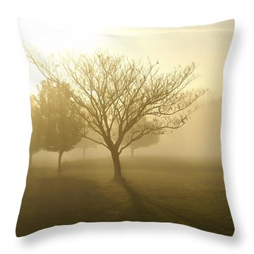Ozarks Misty Golden Morning Sunrise Throw Pillow