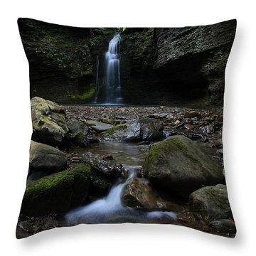 Ozarks Paradise Throw Pillow