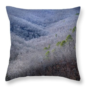 Ozarks Trees #4 Throw Pillow