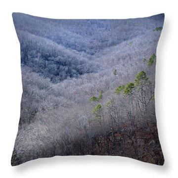 Ozarks Trees #4 Throw Pillow