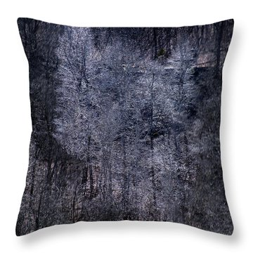 Ozarks Trees #6 Throw Pillow