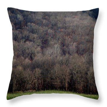 Ozarks Trees Throw Pillow