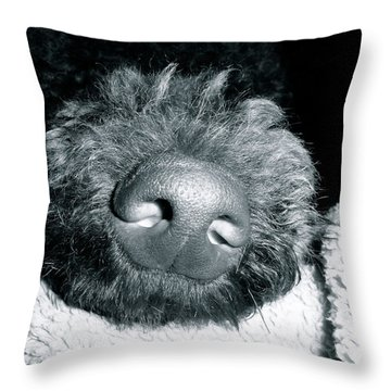 Bodhi Nose Throw Pillow by Gallery Messina